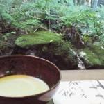 ザ・風流!鎌倉の「報国寺」「明月院」の写真と行き方を詳しく紹介