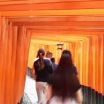 【京都】刷り込まれている人気観光地の横・後ろの顔