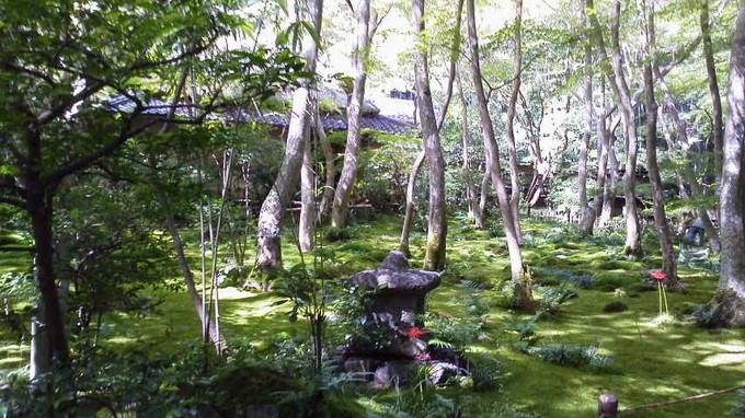 祇王寺-京都