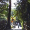 京都で激安レンタサイクルを発見!その名も「グリーンフラッグ」