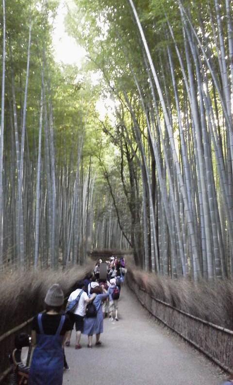 竹林の小径-京都