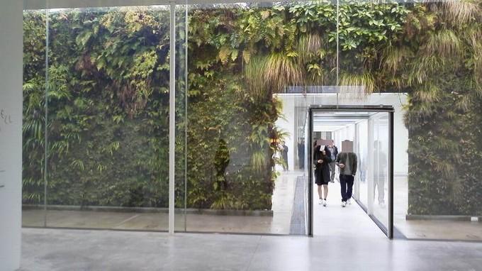 植物-金沢21世紀美術館