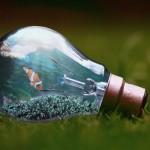 また!?2018年は電気料金の値上げラッシュからスタート…。対象の電力会社と値上がり額、対策は?