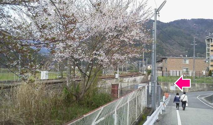 馬堀駅から亀岡へ-トロッコ京都