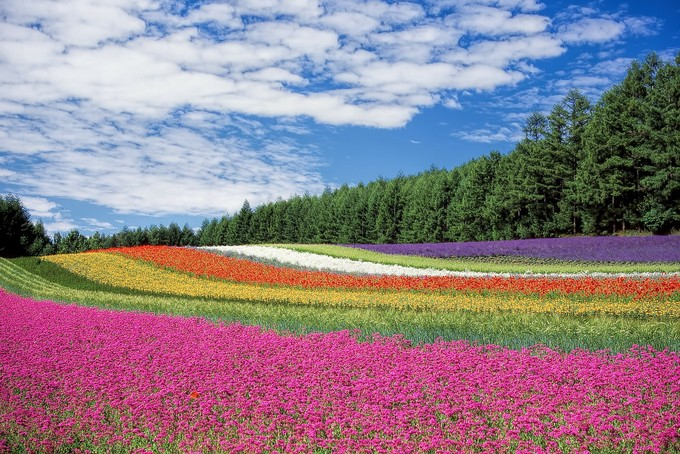 イオンカードKitaca-北海道