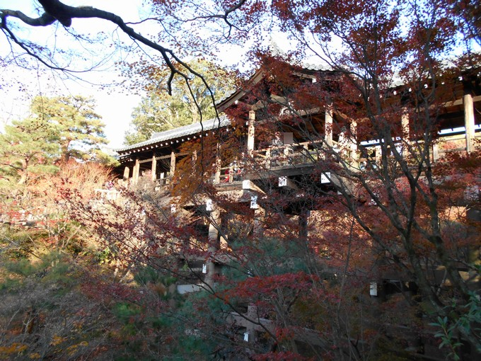 東福寺の紅葉1