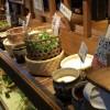 都野菜 賀茂「四条烏丸店」のモーニングへ!安いのにはワケがあった。並ぶ時間などレビュー!