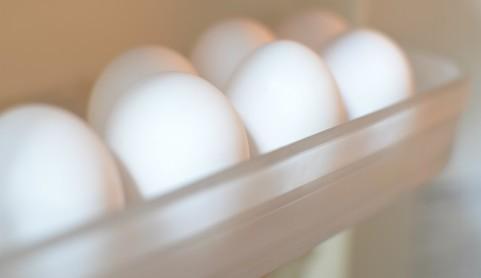 卵-冷蔵庫