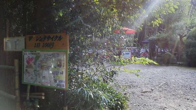 グリーンフラッグ-京都