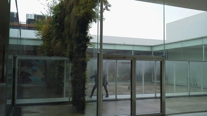 植物壁-金沢21世紀美術館