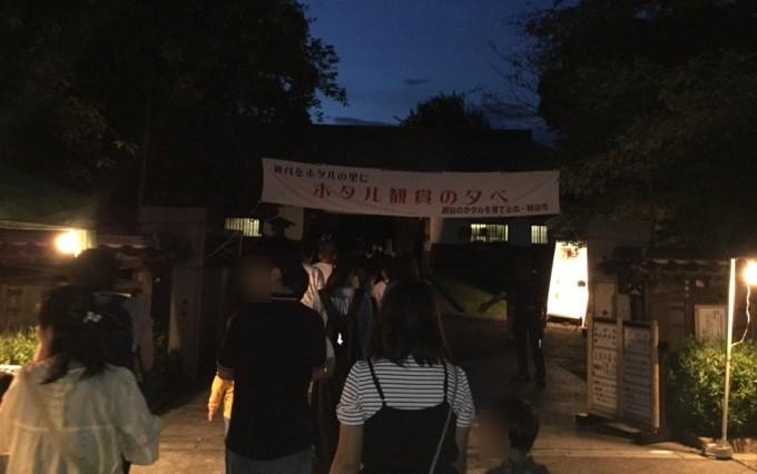 ホタル観賞の夕べ-越谷花田苑ホタル観賞